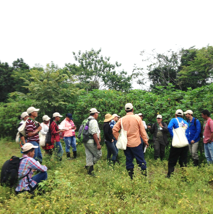 Participants listening to a lecture in a field